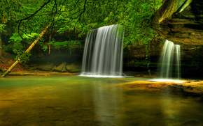 caney Creek Falls, bankhead nationalen Wald, alabama, Wasserfall, Fluss, Bume