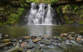 森林, 河, 瀑布, 石头