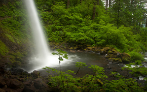 ponytail falls, columbia river, oregon, Columbia River, Oregon, waterfall, flow, forest, river