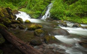 triple falls, columbia river, oregon, река Колумбия, Орегон, водопад, камни, бревно, лес, река