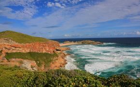 costa, Sudafrica, Plettenberg Bay, natura