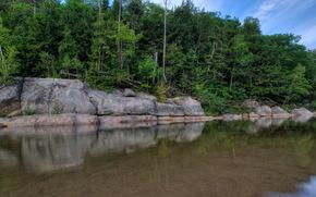 Река, США, Камни, Лес, sawyers bartlett, Природа