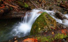 small river, creek, stones, moss, log, roll, waterfall, nature