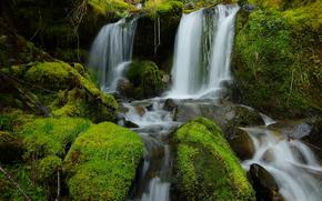 cascada, pequeo ro, piedras, musgo, Naturaleza
