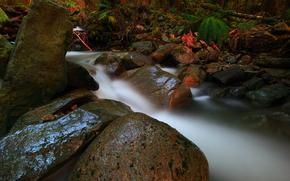 piccolo fiume, torrente, corso, pietre, natura
