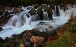 лес, речка, течение, водопады, камни, растительность, природа
