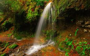 cascada, chorro de agua, musgo, vegetacin, Naturaleza