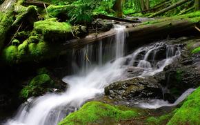 река, водопад, течение, скалы, мох, бревно, природа