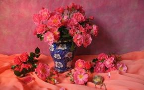 Roses, vaso, Petali, tulle