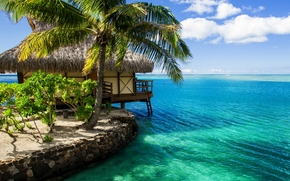 maldives, Maldives, lodge, bungalow, water, palm, ocean, sky, clouds, nature
