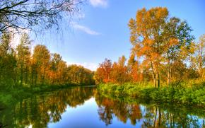 fiume, alberi, autunno