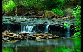 pequeo ro, cascada, piedras, Los rboles, Naturaleza