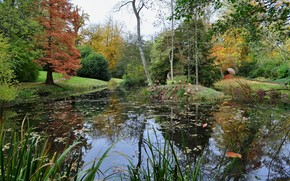 парк, пруд, деревья, осень