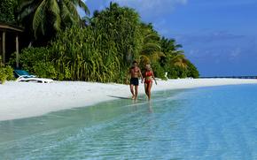 马尔代夫, 热带, 海滩, 海, 休息, 手掌
