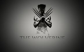 the, wolverine, wolverine