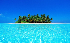 Maldive, tropici, isola