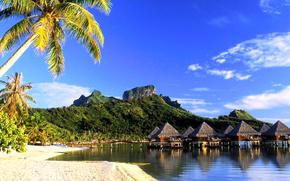 Bora Bora, tropici, spiaggia, bungalow, palma