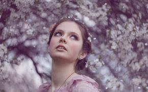 розовые, мечты, девушка, цветы, портрет, весна, сказка, принцесса, красивая, настроение, нежность, нежная