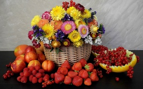 strawberry, raspberry, nektaoiny, redcurrant, Flowers, basket, melon, fruit, Berries, still life