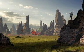 erba, insediamento, Rocks