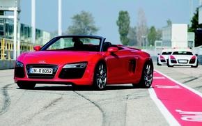 rojo, Audi, cabriol, da, capucha, mquina