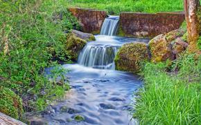 pequeo ro, cascada, hierba, Los rboles, Naturaleza