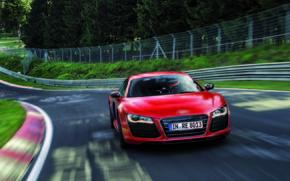 prima, rosso, alberi, Audi, traccia, velocit