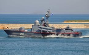 Flotta, Nero, marina, progetto, nave, barca, missile, flotta, La Federazione russa.