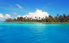 Maldivas, trpicos, isla
