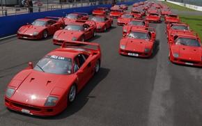 macchina, Ferrari, strada, giorno, gara, molti, traccia