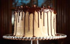 pastel, chocolate, barniz, dulce