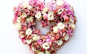 Flores, Eustoma, corazn, Rosa, hortensia