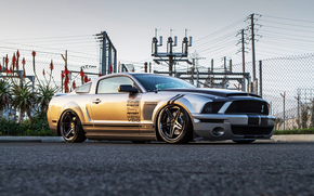ford, net, cobra, Wire, fence, Palms, road, Shelby, ford, Mustang