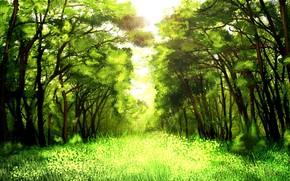 Arte, verdura, alberi, natura, soleggiato, erba, foresta
