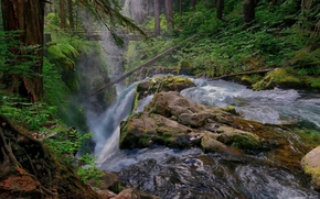 sol duc falls, olympic national park, washington, waterfall, forest, bridge, river