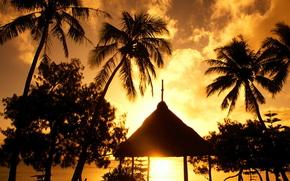 Island, beach, landscape