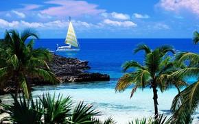 Caribi, Isole, spiaggia, paesaggio