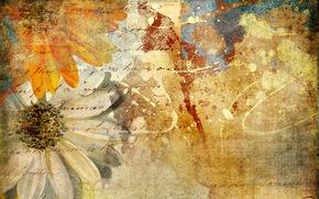 textura, lnea, spray, Flores