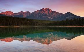 Montanha piramidal, reflexo, Canad, floresta, Parque Nacional de Jasper, Montanhas, Patricia Lake, gua