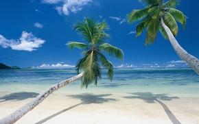 mare, costa, paesaggio