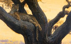 кошка, ветка, хищник, дерево, отдых, дикая, арт, пятна, картина, леопард