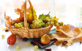 grapes, leaves, autumn, basket, Berries, fruit, pears