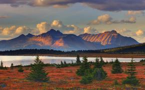 febbre rosso - valle Tonquin, Parco nazionale Jasper, alberta, Canada