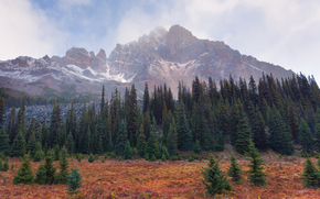 touch of winter in the fall - tonquin valley, jasper national park, alberta