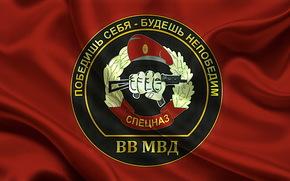 Truppe interne, bandiera, Ministero degli Interni, Forze Speciali