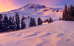 increspature di luce, Parco Nazionale del Monte Rainer, Washington
