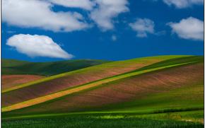 endless rolling hills, palouse, wa