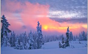 compensazione tempesta, zona paradiso, Mount Rainier National Park