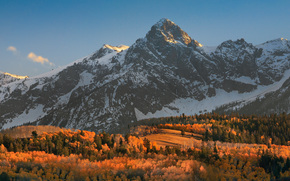 top of the morning, color light, sunrise fall forest autumn, colorado