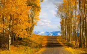 ir a casa - la ltima carretera dlar, teluro, Colorado